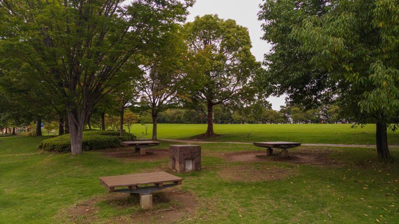 川越運動公園 木陰のベンチ
