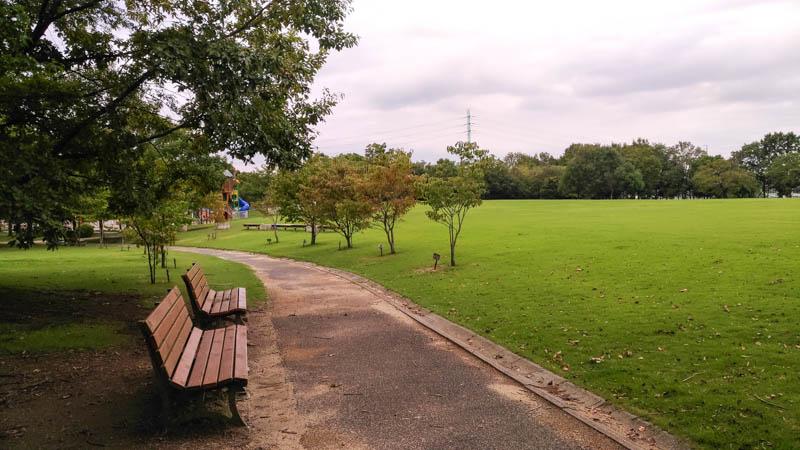 川越運動公園「自由広場」のベンチ